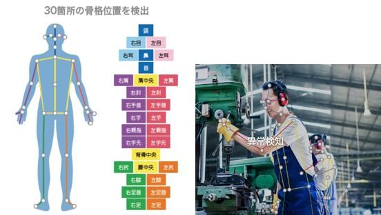 AI骨格検知システム